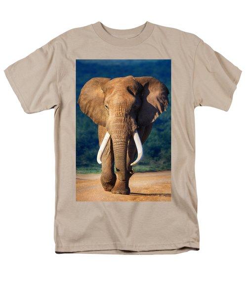 Elephant Approaching Men's T-Shirt  (Regular Fit) by Johan Swanepoel