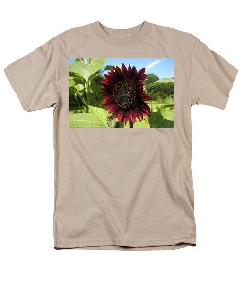 Men's T-Shirt  (Regular Fit) featuring the photograph Evening Sun Sunflower #1 by Jeff Severson