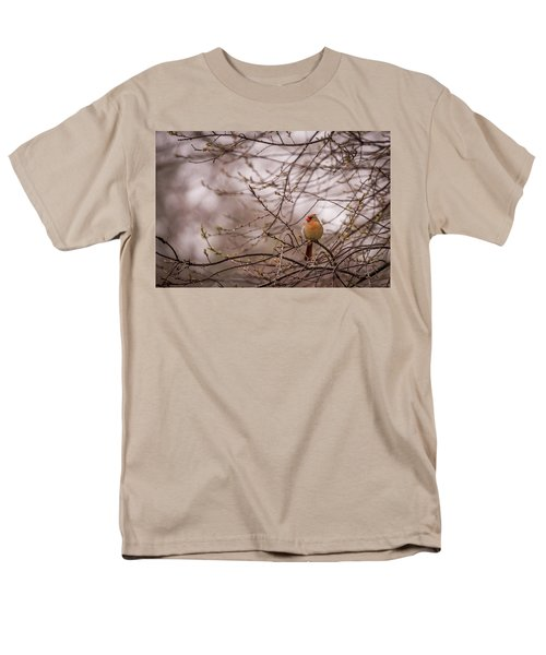 Men's T-Shirt  (Regular Fit) featuring the photograph Female Cardinal In Spring 2017 by Terry DeLuco