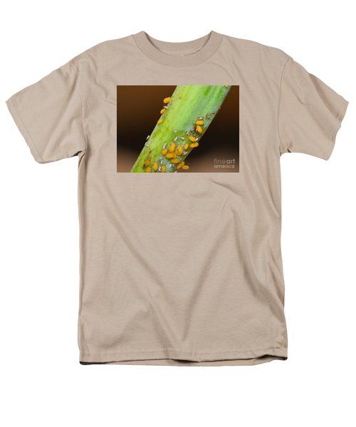 Golden Aphids Men's T-Shirt  (Regular Fit) by Lew Davis