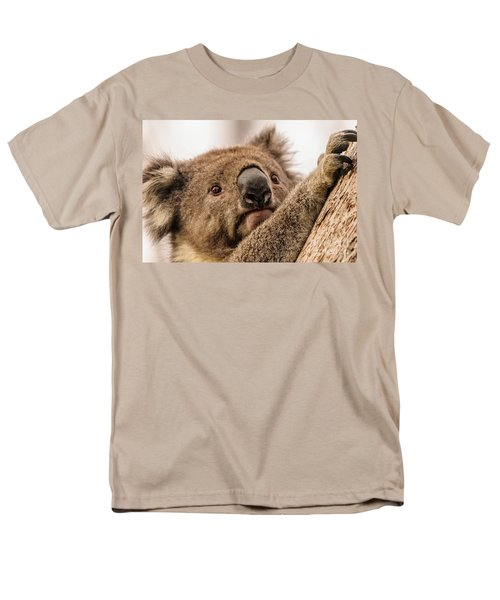 Koala 3 Men's T-Shirt  (Regular Fit) by Werner Padarin