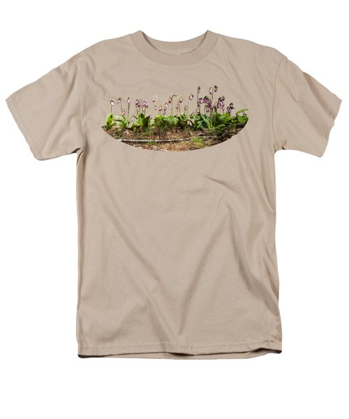 Lady Slippers Men's T-Shirt  (Regular Fit) by Daniel Hebard