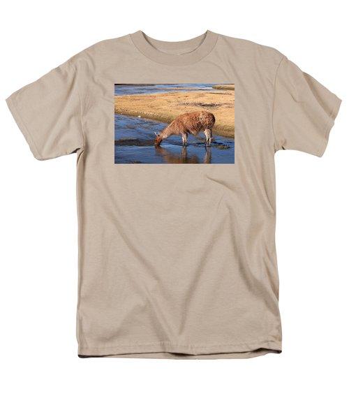 Llama Drinking In River Men's T-Shirt  (Regular Fit)