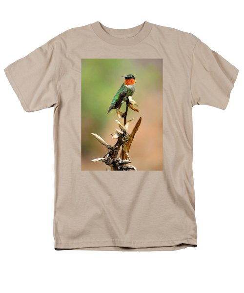 Men's T-Shirt  (Regular Fit) featuring the photograph Male Ruby Throat Hummingbird by Phyllis Beiser