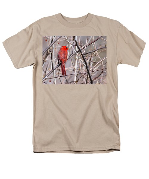 Men's T-Shirt  (Regular Fit) featuring the photograph Northern Cardinal In The Sun by Edward Peterson
