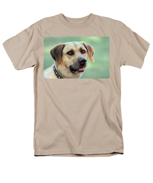 Portrait Of A Yellow Labrador Retriever Men's T-Shirt  (Regular Fit) by Sheila Brown