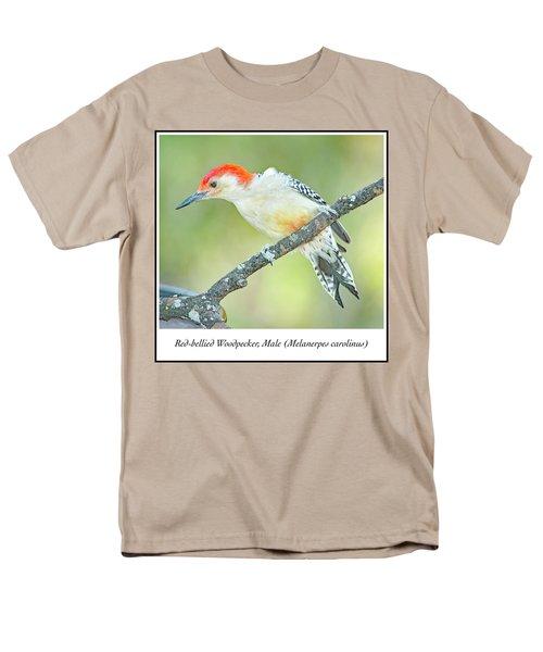 Red Bellied Woodpecker, Male Men's T-Shirt  (Regular Fit) by A Gurmankin