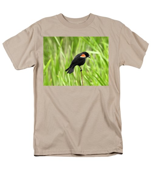 Red-winged Blackbird Men's T-Shirt  (Regular Fit) by Brian Chase
