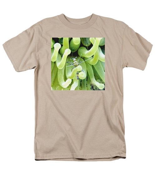 Shrimp And The Anemone Men's T-Shirt  (Regular Fit) by Amy McDaniel