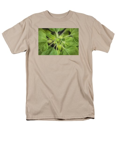 Sunflower Helianthus Giganteus Painted Men's T-Shirt  (Regular Fit) by Rich Franco