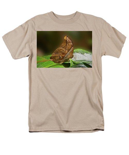 Tawny Owl Men's T-Shirt  (Regular Fit) by Ronda Ryan