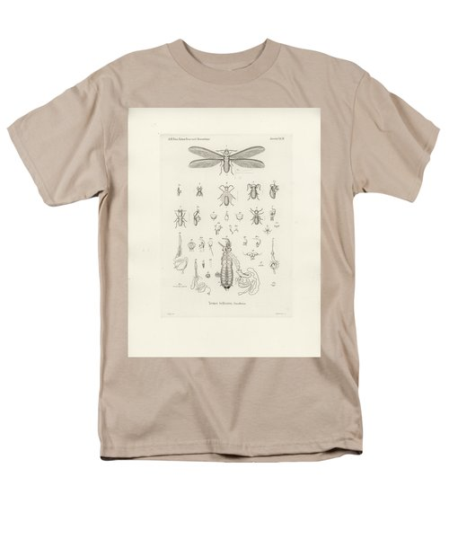 Termites, Macrotermes Bellicosus Men's T-Shirt  (Regular Fit) by H Hagen
