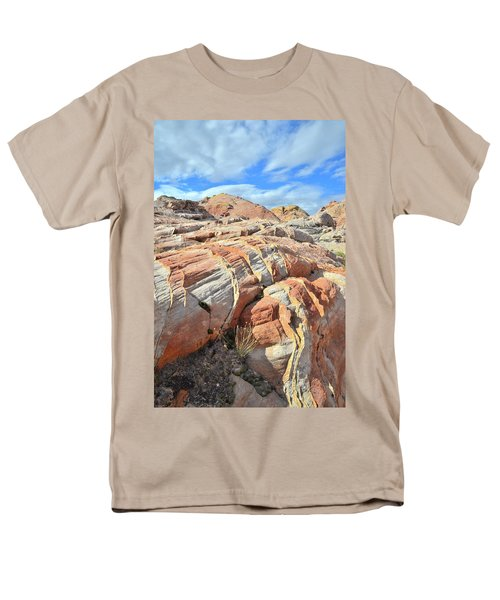 Tiger Stripes In Valley Of Fire Men's T-Shirt  (Regular Fit) by Ray Mathis