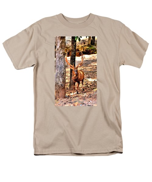 Watchfull Stag Men's T-Shirt  (Regular Fit) by James Potts