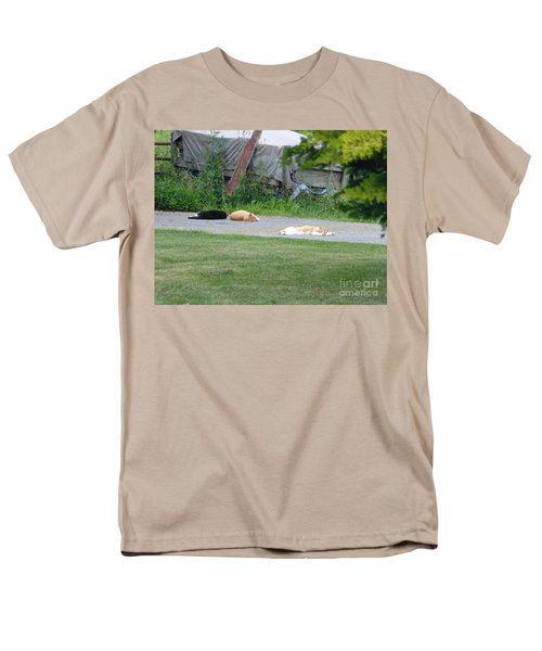 Men's T-Shirt  (Regular Fit) featuring the photograph What A Day by Donald C Morgan