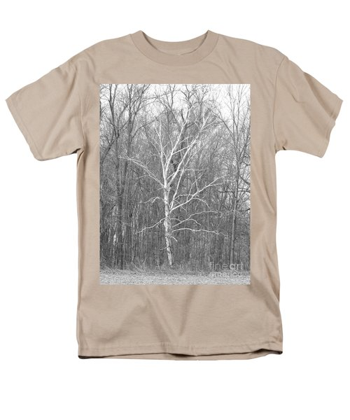White Birch In Bw Men's T-Shirt  (Regular Fit) by Erick Schmidt