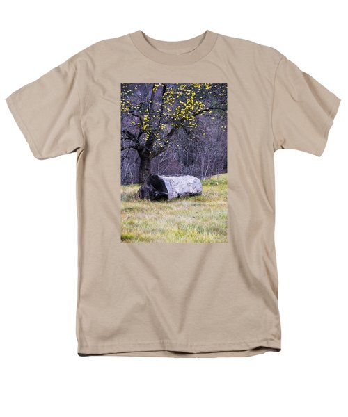 Yellow Apples Men's T-Shirt  (Regular Fit) by Tom Singleton