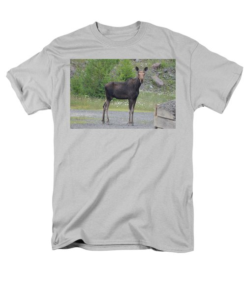 Moose Men's T-Shirt  (Regular Fit) by James Petersen