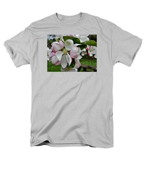 Apple Blossoms 2 Men's T-Shirt  (Regular Fit) by VLee Watson