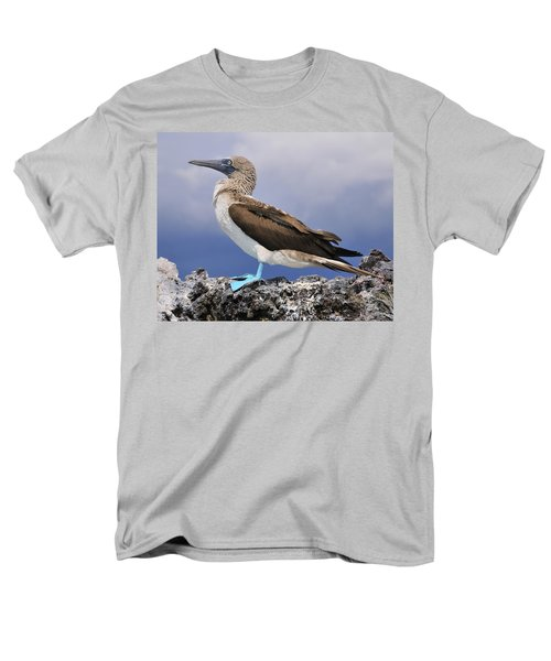 Blue-footed Booby Men's T-Shirt  (Regular Fit) by Tony Beck