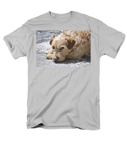 Men's T-Shirt  (Regular Fit) featuring the photograph Cruz You Looking At Me by Thomas Woolworth
