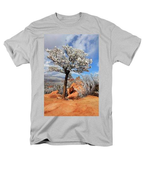 Frosted Wonderland 3 Men's T-Shirt  (Regular Fit) by Diane Alexander