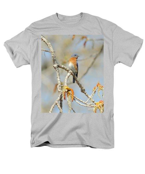 Male Bluebird In Budding Tree Men's T-Shirt  (Regular Fit) by Robert Frederick