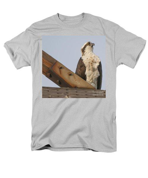 Osprey -seahawk Men's T-Shirt  (Regular Fit) by Dale Powell