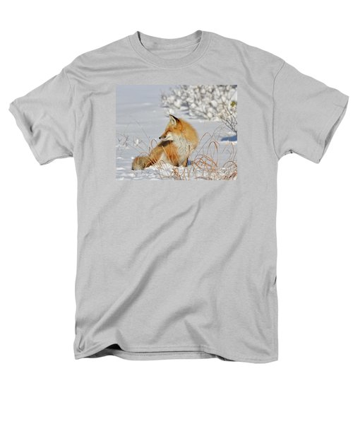 Men's T-Shirt  (Regular Fit) featuring the photograph Soaking Up The Sun by Sami Martin