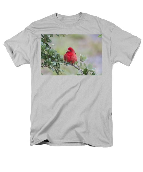 Spring Beauty Men's T-Shirt  (Regular Fit) by Doug Lloyd