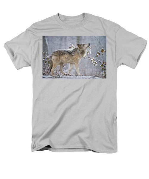 Timber Wolf Pictures 188 Men's T-Shirt  (Regular Fit) by Wolves Only