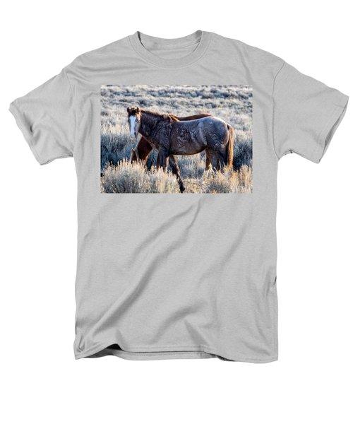 Velvet - Young Colt In Sand Wash Basin Men's T-Shirt  (Regular Fit)
