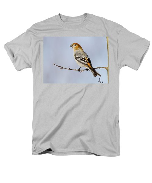 Female Pine Grosbeak Men's T-Shirt  (Regular Fit) by Doug Lloyd