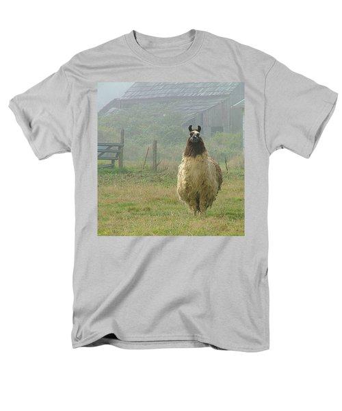 Coast Llama Men's T-Shirt  (Regular Fit) by Wendy McKennon