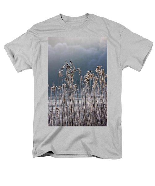 Frozen Reeds At The Shore Of A Lake Men's T-Shirt  (Regular Fit) by John Short