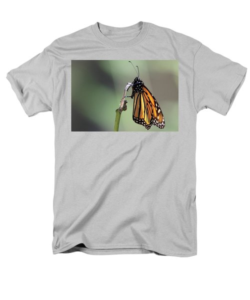 Monarch Butterfly Stony Brook New York Men's T-Shirt  (Regular Fit) by Bob Savage