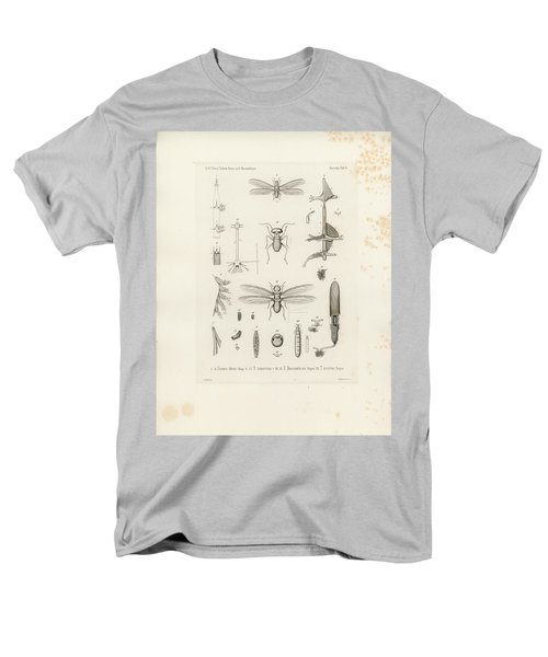 African Termites And Their Anatomy Men's T-Shirt  (Regular Fit) by W Wagenschieber