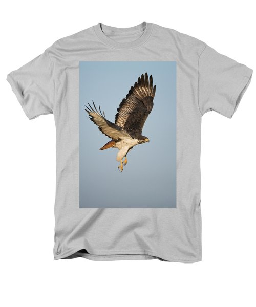 Augur Buzzard Buteo Augur Flying Men's T-Shirt  (Regular Fit) by Panoramic Images