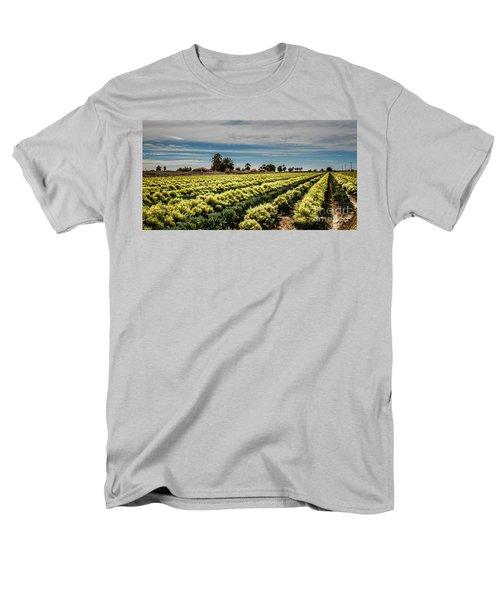 Broccoli Seed Men's T-Shirt  (Regular Fit) by Robert Bales