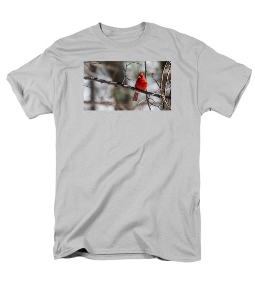 Cardinal Men's T-Shirt  (Regular Fit) by Dan Traun