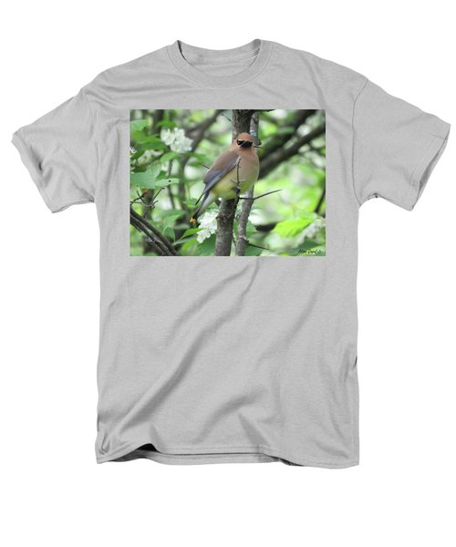 Cedar Wax Wing Men's T-Shirt  (Regular Fit) by Alison Gimpel
