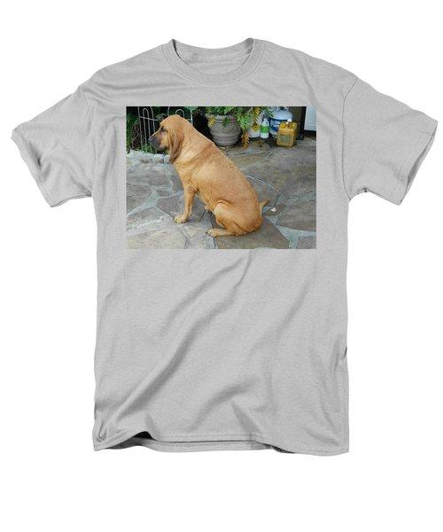 Cujo Sitting Around Men's T-Shirt  (Regular Fit) by Val Oconnor