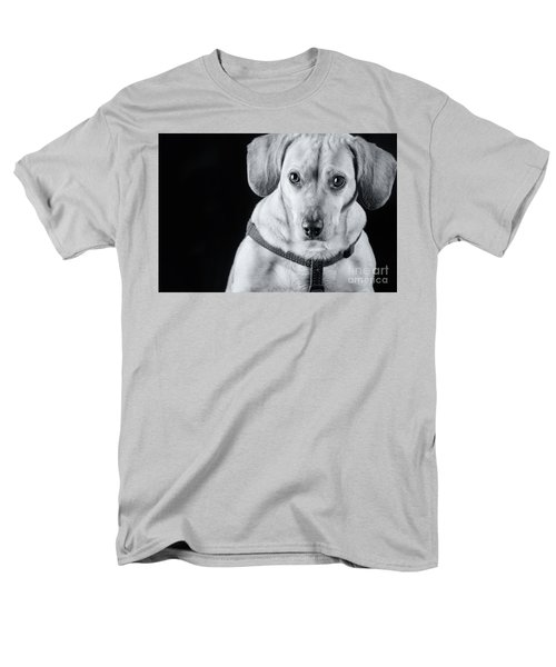 Dachshund Lab Mix Men's T-Shirt  (Regular Fit) by Stephanie Hayes