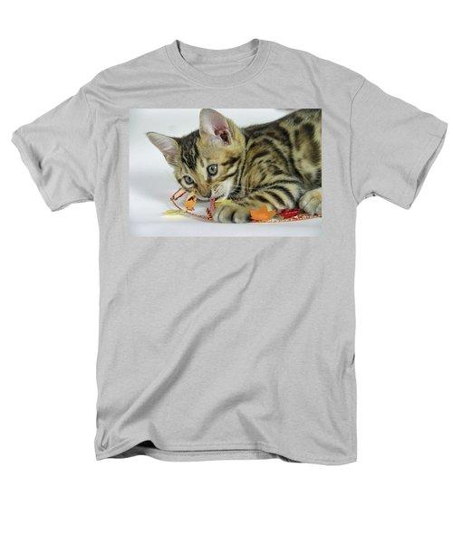 Fall Kitten Men's T-Shirt  (Regular Fit) by Shoal Hollingsworth