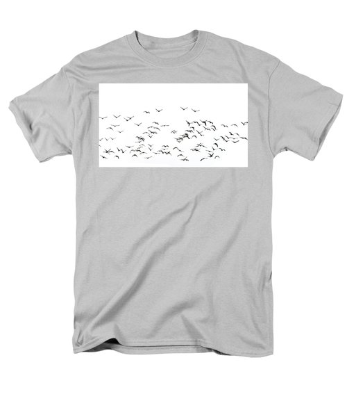 Flock Of Beautiful Migratory Lapwing Birds In Clear Winter Sky I Men's T-Shirt  (Regular Fit) by Matthew Gibson