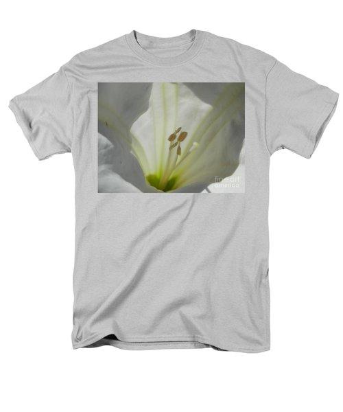 Good Afternoon Arizona Men's T-Shirt  (Regular Fit)
