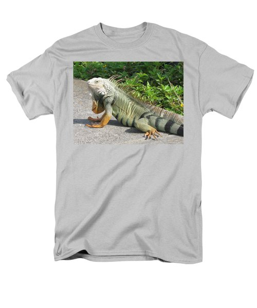 Iguania Sunbathing Men's T-Shirt  (Regular Fit) by Christiane Schulze Art And Photography