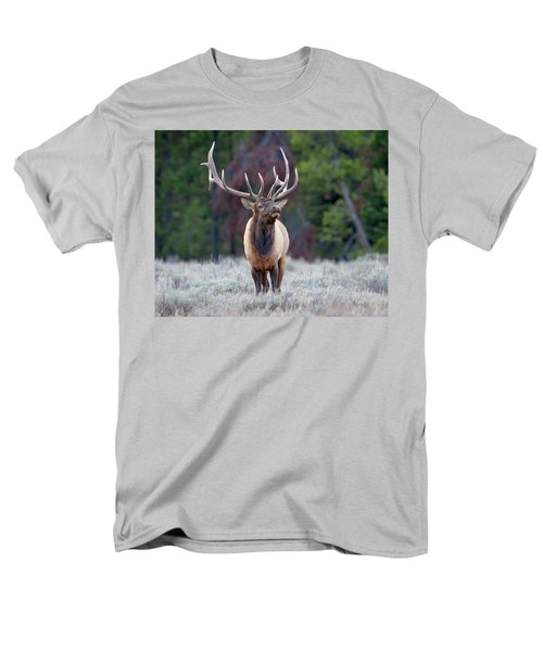 Majestic Bull Elk Men's T-Shirt  (Regular Fit) by Jack Bell