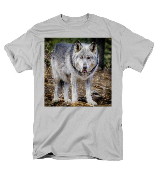 Men's T-Shirt  (Regular Fit) featuring the photograph The Great Gray Wolf by Teri Virbickis