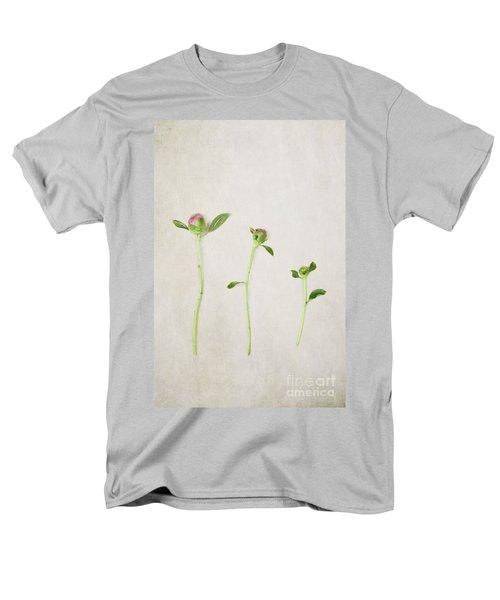 Three Buds Men's T-Shirt  (Regular Fit)